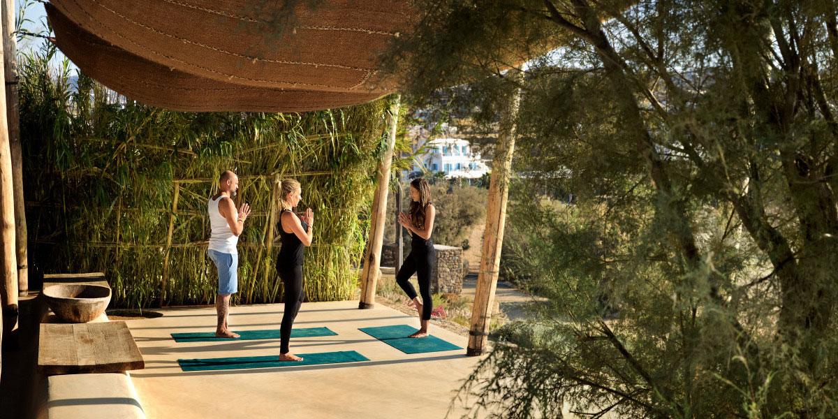 for-long-photo2016-Ambassador-Yoga-Retreat-1_preview